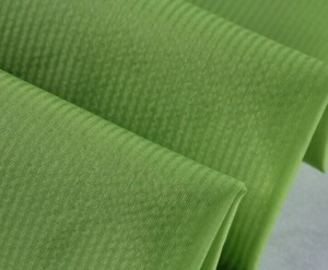 15D nylon waterproof skinsuits fabric